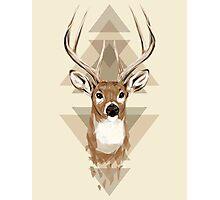 Geometric Deer Photographic Print