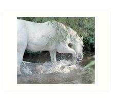 Splashing horse Art Print