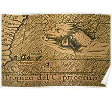 Tropico del Capricorno Poster