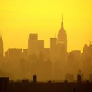 New York City late afternoon by Alberto  DeJesus