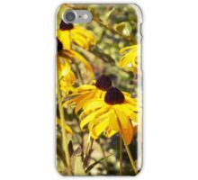 Yellow Cone Flowers iPhone Case/Skin