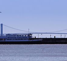 The Verrazano-Narrows Bridge /Statue Cruises Miss Freedom by VDLOZIMAGES