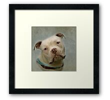 The Look of Love... Is In Your Eyes Framed Print