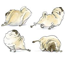 Four Pug Poses by inkpug
