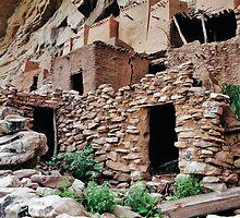 Teli a Dogon Village in Mali, West Africa by Daniel B McNeill