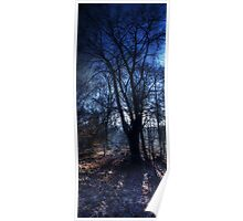 Epping Forest in Winter Oil Effect Poster