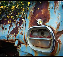 New Use For An Old Holden Ute by John Quixley