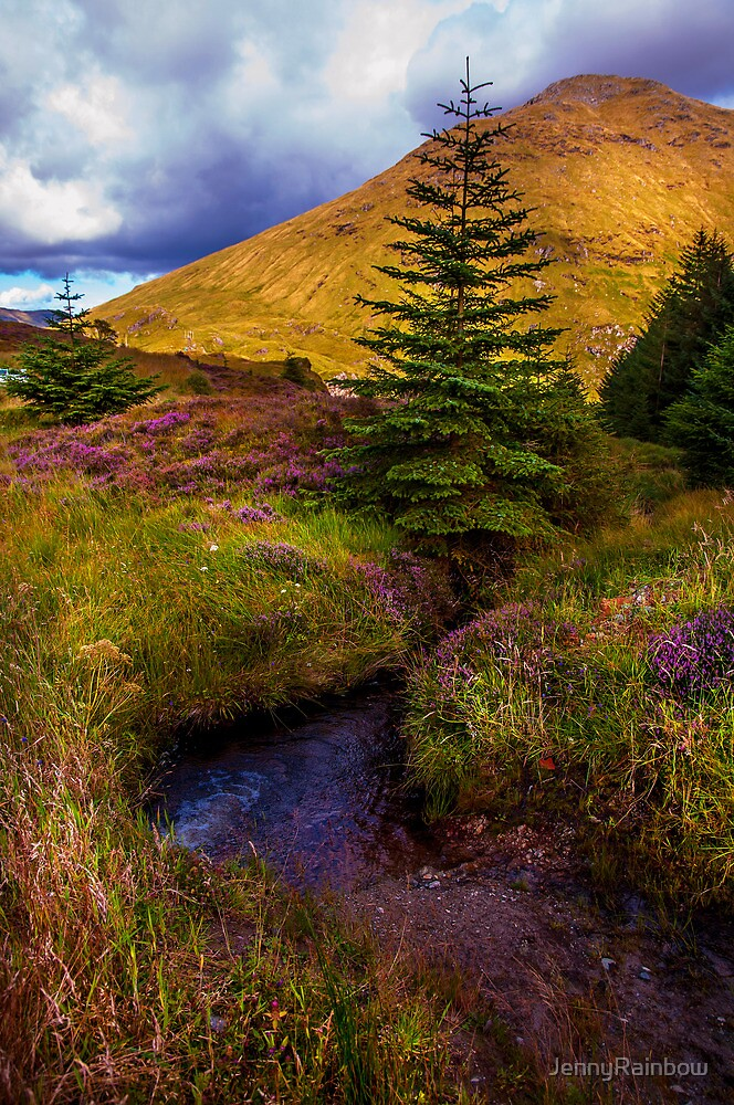 Beauty all Around. Rest and Be Thankful. Scotland by JennyRainbow