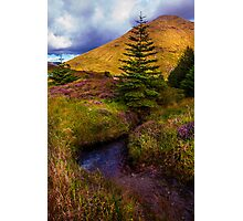 Beauty all Around. Rest and Be Thankful. Scotland Photographic Print