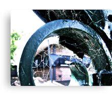 Iron web Canvas Print
