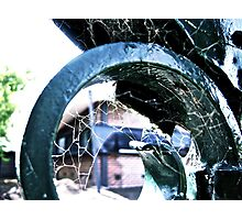 Iron web Photographic Print