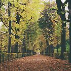 autumn in the park by andrea-ioana