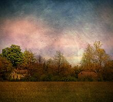 Old Farmstead in the Country by PineSinger