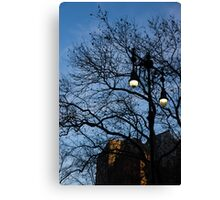 Glimpses of New York City - Skyscrapers Through the Tree Branches Canvas Print