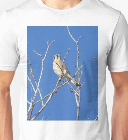 An American Kestrel Surveying its Domain Unisex T-Shirt