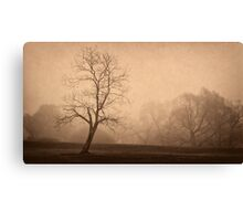 Trees in silhouette and fog Canvas Print