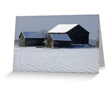 Three Against The Cold Greeting Card