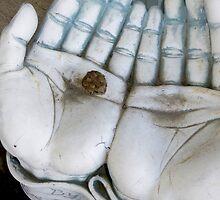 A Frog In Hand by WildestArt