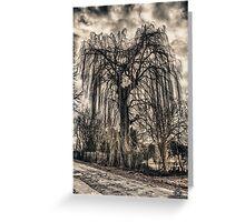 HDR grunge tree Greeting Card