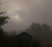 Weak Sunrise by Kathi Arnell