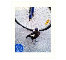 Magpie - 20 11 13 - Claremont Park Art Print