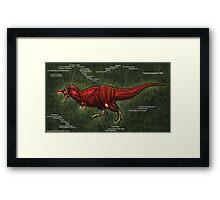 Tyrannosaurus Rex Muscle Study Framed Print