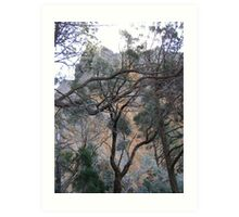 On the Way down from 'High Tops'. Warrumbungle Nat. Park. N.S.W. Art Print