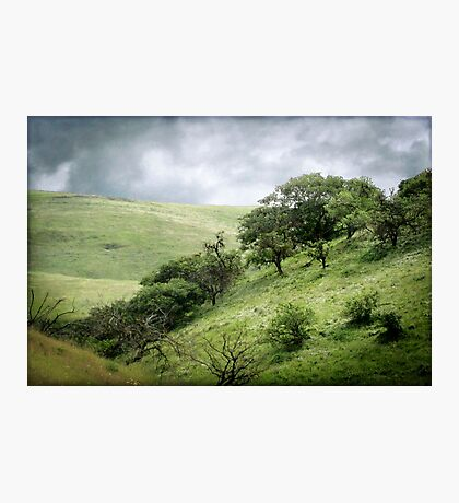 The Green, Green Hills of Home Photographic Print