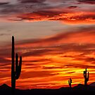 Arizona Threesome by Marty Straub