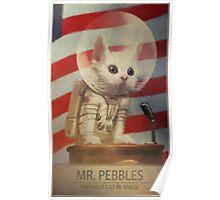 Mr Pebbles Poster