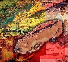 Czech Hamster Shoe by OtherRealisms