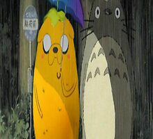 Jake and Totoro by Cupcake2605