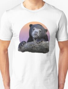 Confession Bear  T-Shirt