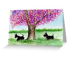 Two Scottie Dogs Greeting Card