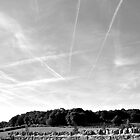 Vapour Trails by David Perrin