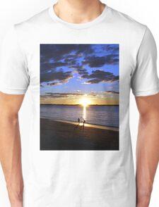 Frisbee Sunset Unisex T-Shirt