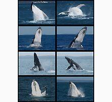 Humpback Whales Breaching 2 Unisex T-Shirt