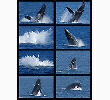 Humpback Whales Breaching 3 Unisex T-Shirt