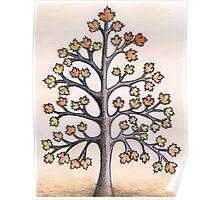 érable à sucre - sugar maple tree Poster