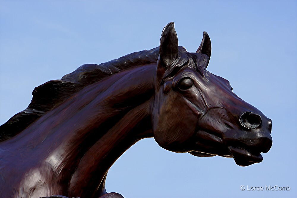 2014 The Year of The Horse by © Loree McComb