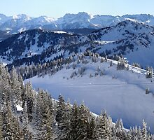 Panoramic view on the Alps by joggi2002
