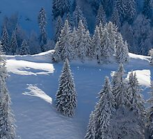 Snow in the Mountains by joggi2002