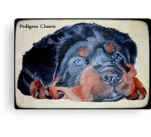 Rottweiler Puppy Portrait With Pedigree Charm Greeting Canvas Print