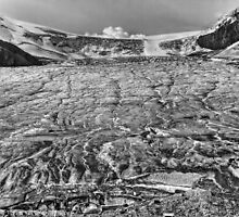 Grizzled Glacier in grey by JamesA1