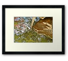 Mighty Mother Nature Framed Print
