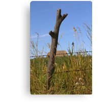 Forked Fence Post Canvas Print
