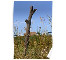 Forked Fence Post Poster