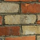 Just Another Brick In The Wall!   (VIEW LARGE) by Colleen2012