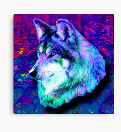 Only Disco Canvas Print