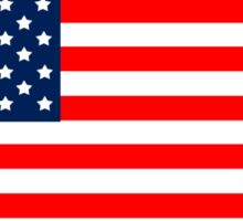 Flag of the United States of America Sticker